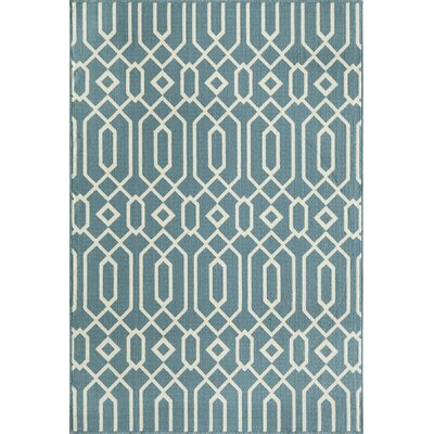 Breakwater Bay Norris Blue Indoor/Outdoor Area Rug VI