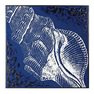 Cone Shell Framed Graphic Art