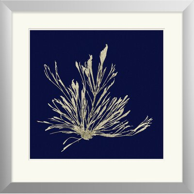 Breakwater Bay Seaweed on Navy III Framed Painting Print