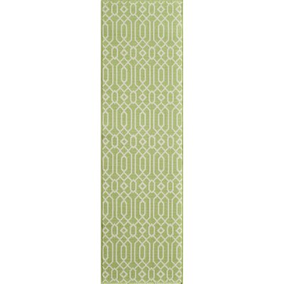 Halliday Green Indoor/Outdoor Area Rug Rug Size: Runner 23 x 76