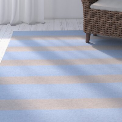 Peugeot Sky Blue/Light Gray Indoor/Outdoor Area Rug Rug Size: 2 x 3