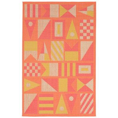 Orange Indoor/Outdoor Area Rug Rug Size: 33 x 411