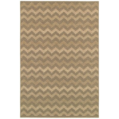 Thompson Brown/Tan Area Rug Rug Size: Runner 23 x 119