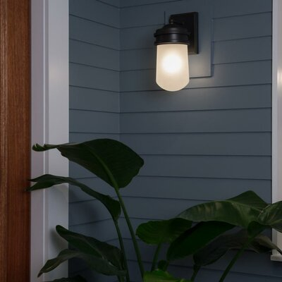 Breakwater Bay Irving 1 Light Outdoor Wall Lantern