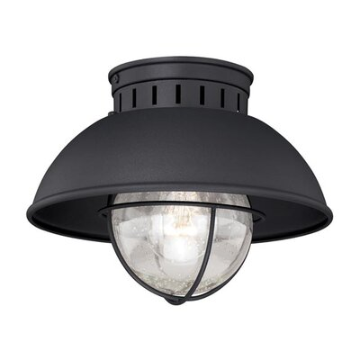 Archibald 1-Light Flush Mount Finish: Textured Black