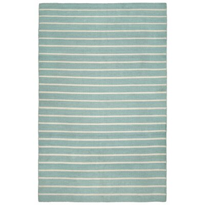 Ranier Pinstripe Hand Woven Blue Indoor/Outdoor Area Rug Rug Size: Rectangle 36 x 56
