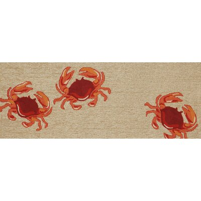 Walton Crabs Area Rug Rug Size: Runner 2'3