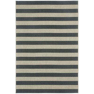 Palm Cove Cinders Black/Beige Striped Outdoor Area Rug Rug Size: 311 x 56