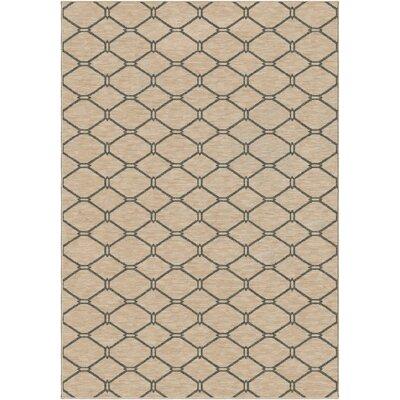 Glenva Beige/Gray Area Rug Rug Size: 53 x 76