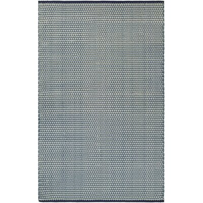 Dewey Hand-Woven Light Blue Indoor/Outdoor Area Rug Rug Size: 2 x 3