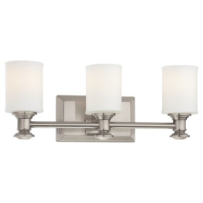 Delmont 3-Light Vanity Light Finish : Brushed Nickel