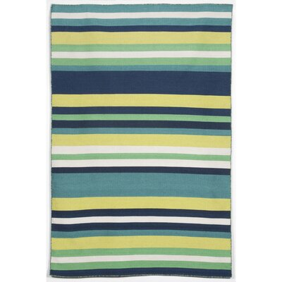 Ranier Hand-Woven Green Indoor/Outdoor Area Rug Rug Size: 83 x 116