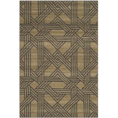 Fitzpatrick Hand-Woven Olive/Gray Area Rug Rug Size: Rectangle 4 x 6