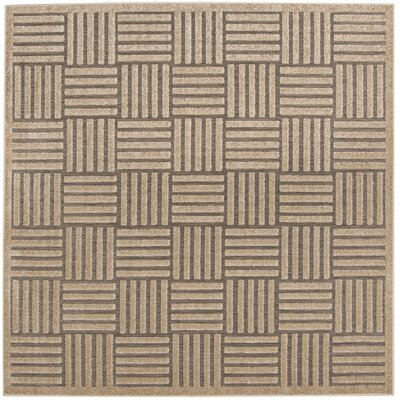 Zaniyah Gray Indoor/Outdoor Area Rug Rug Size: Square 6'7