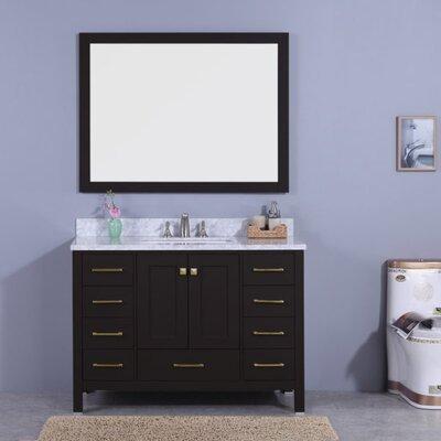 Bluebird 49 Single Bathroom Vanity Set with Mirror Base Finish: Espresso