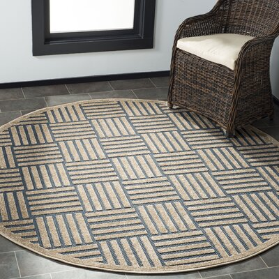 Zaniyah Brown Indoor/Outdoor Area Rug Rug Size: Round 67