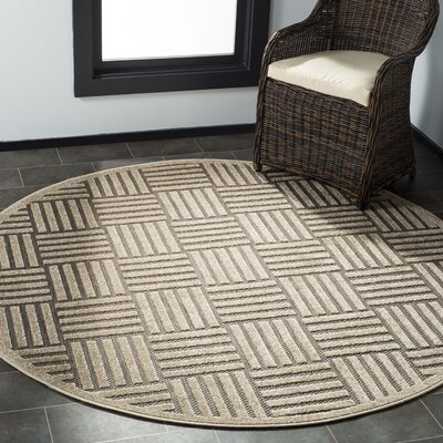Zaniyah Gray Indoor/Outdoor Area Rug Rug Size: Round 67
