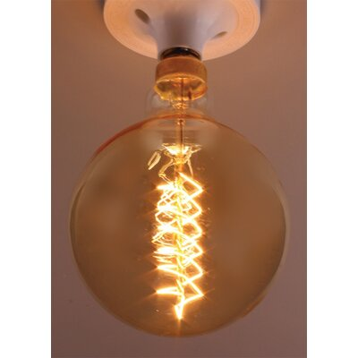 40W Incandescent Light Bulb