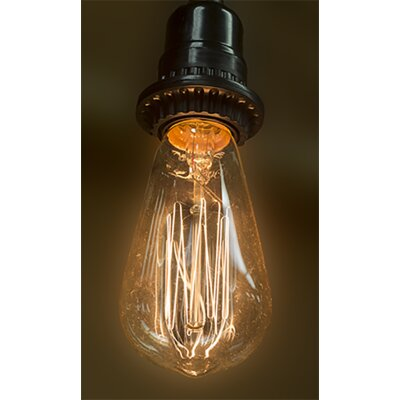 40W Amber E26/Medium Incandescent Vintage Filament Light Bulb (Set of 6)