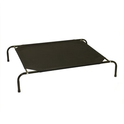 Basic Elevated Steel Frame Pet Cot Size: Small (35 W x 23 D), Color: Black