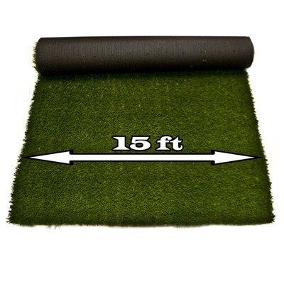 Artificial Garden Grass Indoor/Outdoor Green Area Rug Rug Size: W Shape 15 x 40