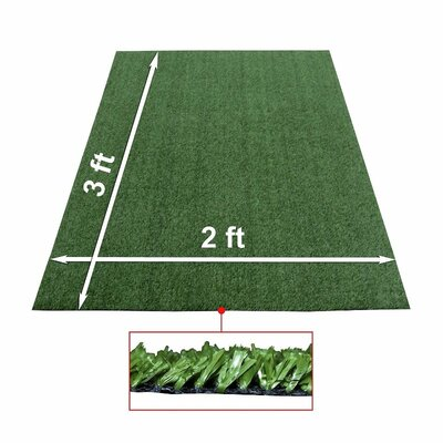 Artificial Garden Grass Indoor/Outdoor Green Area Rug Rug Size: W Shape 2 x 3