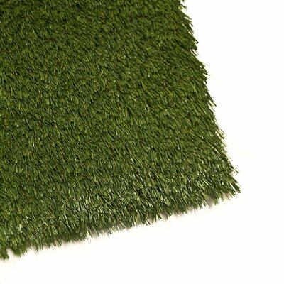 Mckayla Artificial Garden Grass Green Indoor/Outdoor Area Rug Rug Size: Rectangle 4 x 6