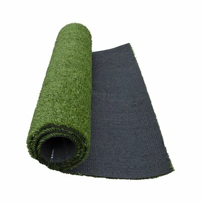 Camryn Artificial Garden Grass Green Indoor/Outdoor Area Rug Rug Size: Rectangle 4 x 6