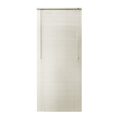 Vinyl Semi-Sheer Horizontal Blind Blind Size: 26W x 64L, Color: Alabaster