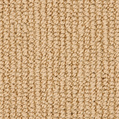 Andiron Gold Haze Area Rug