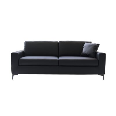 Hanna Sleeper Sofa Upholstery: Black