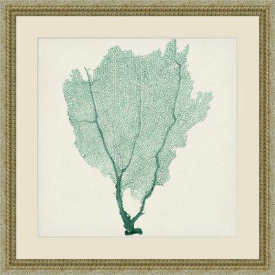 'Sea Fan I' Framed Painting Print GBL21318