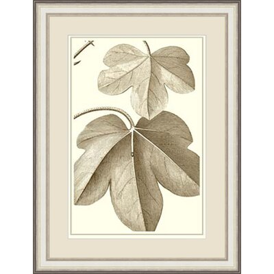 'Cropped Sepia Botanical III 'Framed Painting Print GBL57376