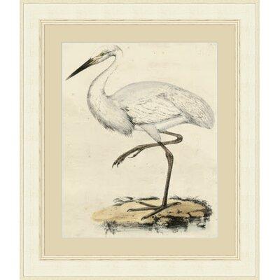 'Antique Heron III' Framed Painting Print GBL66028