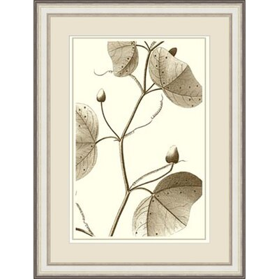 'Cropped Sepia Botanical IV' Framed Painting Print GBL57377