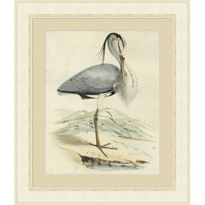 'Antique Heron IV' Framed Painting Print GBL66029