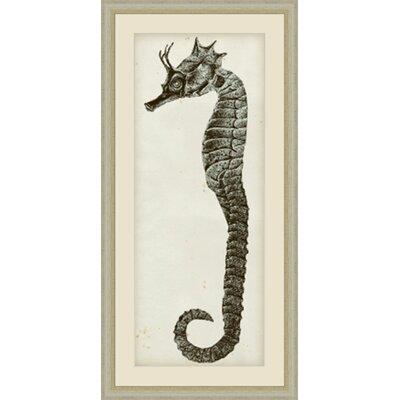 'Vintage Seahorse I' Framed Painting Print GBL67783