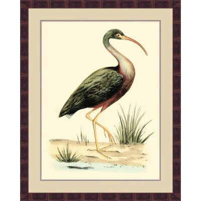 'Water Birds I' Framed Painting Print GBL69879