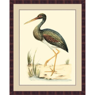 'Water Birds II' Framed Painting Print GBL69880