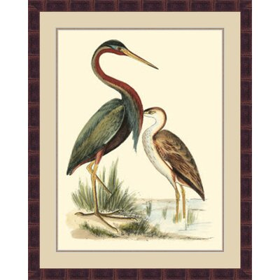 'Water Birds III' Framed Painting Print GBL69881