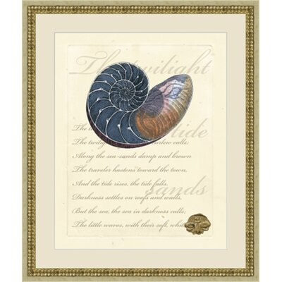 'Romance of the Shell I' Framed Graphic Art GBL69902