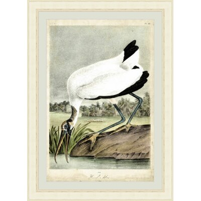 Wood Ibis Framed Painting Print GBL92388