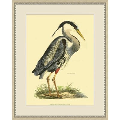 Small Great Heron Framed Painting Print GBL47828
