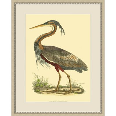 Small Heron Framed Painting Print GBL47829