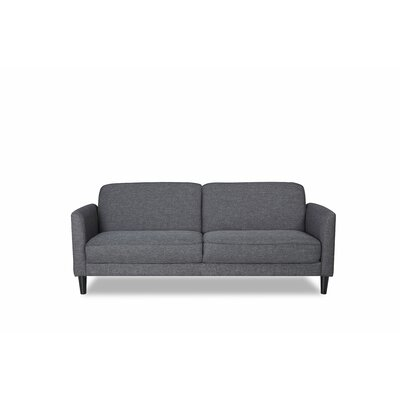 Sleeper Sofa Finish: Dark Gray