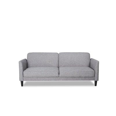 Sleeper Sofa Finish: Gray