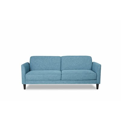 Sleeper Sofa Finish: Blue