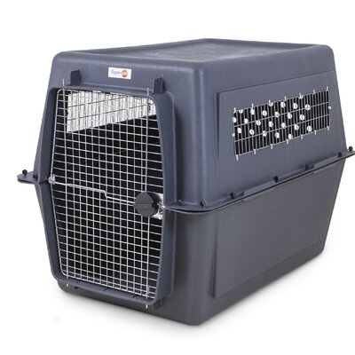 Basilton Pet Carrier