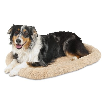 Bolster Kennel Dog Mat Size: 21 W x 32 D x 3.5 H