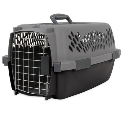 Pet Porter Traditional Pet Carrier Size: 12.56 H x 10 W x 19 L